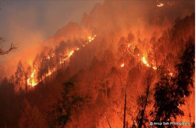 Uttrakhand Fire Fact Check